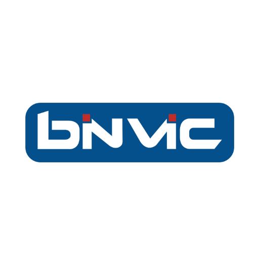 Binvic placholder logo